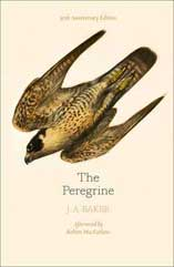 The Peregrine, J A Baker