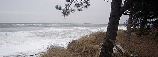 Winter beach at Lomma